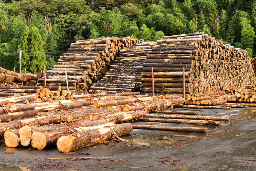Timber Supplies Newcastle